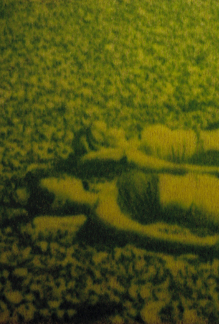 Sunbathers, Ackroyd & Harvey, 2000