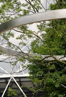 History-Trees-AckroydandHarvey-2012