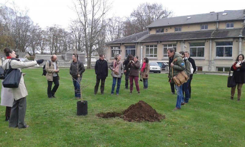 Beuys' Acorns: Trees on Tour 2015 © Ackroyd & Harvey (Planting tree, Le Centre INRA de Versailles)