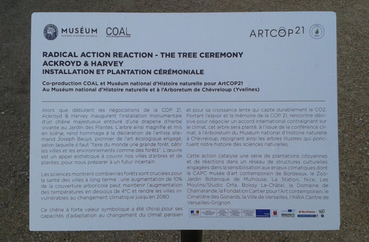 The Tree Ceremony, Radical Action Reaction 2015 © Ackroyd & Harvey