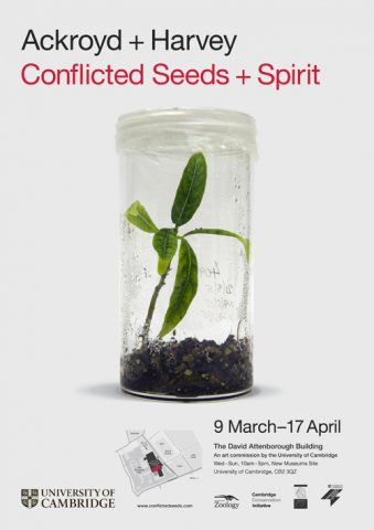 Conflicted Seeds + Spirit, 2016